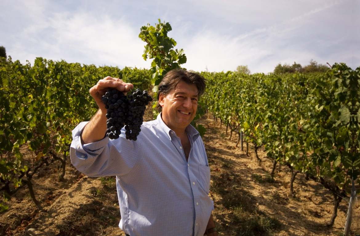 Domaine Jean-Luc Colombo